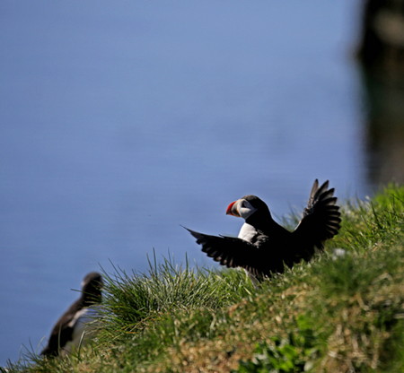 天硕卡:国家摄影家协会御用 环拍冰岛
